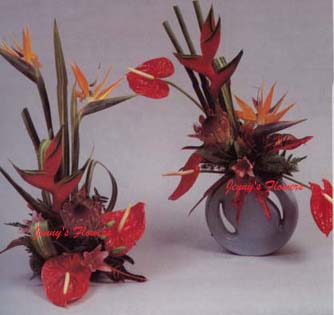 {Bird of Paradise Arrangement}