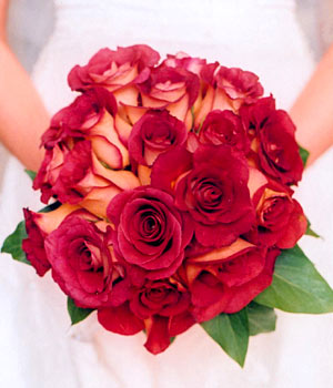 {Fuchsia Roses for your wedding}