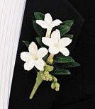 {White boutonniere for the Groom}