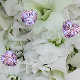 {The Gemma Diamante Collection Brilliant Swarovski crystals and rhinestones in every color imaginable for your bridal bouquet}
